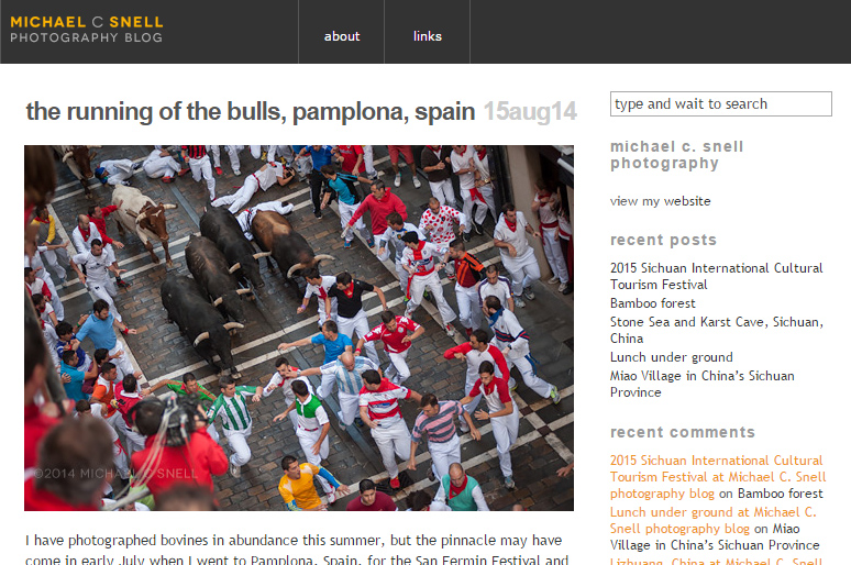 the running of the bulls, pamplona, spain michael c.snell